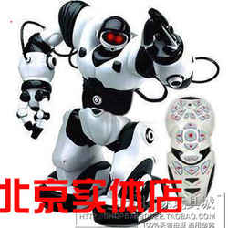 Remote control intelligent robot tt313 infrared remote control robot(China (Mainland))