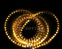 220V DC 3528 300 5M LED Strip SMD Flexible light 60led/m waterproof white/warm Ribbon