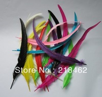 Free shipping Wholesale 100pcs/ lot 12-14inches/30-35cm multi-Colors Dyeing Loose Rooster Tail Feathers For Dress/Hats Trims