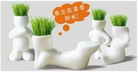 REAL Grass 20PCS New Arrival series of  real planting grass little vase Good for gift decoration 0031