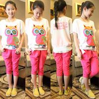 Children's clothing female child summer 2013 child set child sports set 100% owl t-shirt cotton capris free shipping