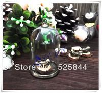 Free shipping!!  2013 NEW 20set/lot 38x25mm DIY tiny Straight glass globe/one glass cover&base&bird&cap