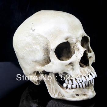 High artificial model mask model resin skull