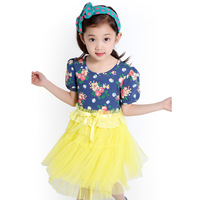 Children's clothing female child 2013 summer child short-sleeve one-piece dress princess yarn skirt puff skirt