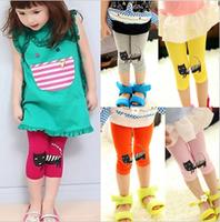 2013 summer female child candy color 100% cotton modal kitten legging !