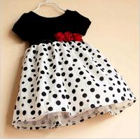 2013 female child polka dot patchwork short-sleeve dress formal dress princess dress q3009