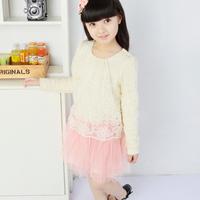 2013 female child spring lace long-sleeve dress princess dress child dress one-piece dress tulle