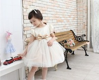 New arrival female child formal dress princess one-piece dress flower girl dress formal dress baby puff skirt formal dress