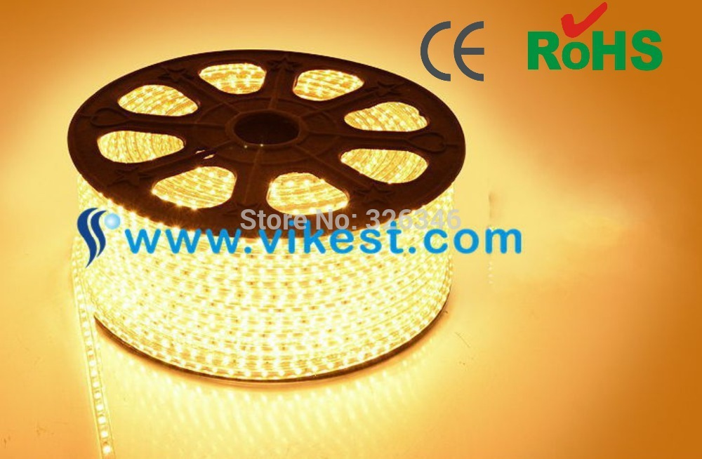wholesale 100M/lot 60led/meter SMD flexible 220V waterproof 5050 Led strip+free shipping led rope light &chirstmas light(China (Mainland))