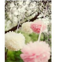 "Free  Shipping 5 pcs 12""  (30cm)Tissue Paper Pom Poms Party Wedding Shower Flower Balls Decoration 20 Colors"