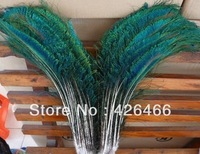 Min.order is $8. New  !50pcs natural peacock feather sword, about 30-40cm/12-16 inches N47