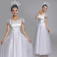 Expansion skirt costume expansion skirt performance wear dance clothes national clothes female