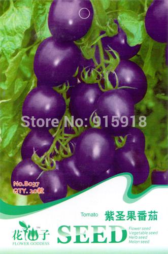 1 Pack 25+ Seeds Garden Heirloom Vegetable Cherokee Purple Blue Tomato Seeds B037(China (Mainland))