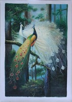 Hand-painted oil painting beautiful peacock decorative painting free shipping