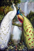 free shipping 100% hand painted oil painting on canvas peacock2