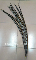 Free shipping 20pcs/lot  40-44inch(100-110cm)  Natural Color Reeves Pheasant Tail Feathers AAA quality