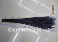 Free Shipping-Wholesale 100pcs/lot 36-40inch(90-100cm)  Lady Amherst Pheasant Tail Feathers