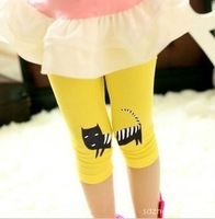 free shipping retail 100% cotton girls' legging,kid's cartton cat cropped legging,3 color girl legging