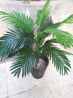 Artificial plants palm trees