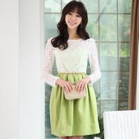 summer lace one-piece dress elegant high quality women's plus size female