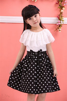 2013 baby summer children's clothing female child child 100% cotton dot chiffon one-piece dress princess