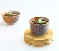 Handmade coarse pottery flower pot fleshier plant flower pot meat basin pots flower