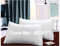 Free shipping new pillows for 2013 hotel slap-up silk 100%down healthy  throw ostrich pillows 48*74cm, comforter bedding