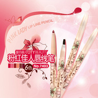 Lip liner lip brush