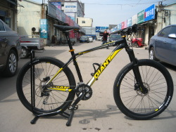 Giant mountain bike 2012 giant bicycle xtc fr pk emerita duke(China (Mainland))