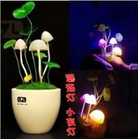 Mini dream night light mushroom lamp bedroom lamp bed-lighting novelty bonsai light landscape lamp a