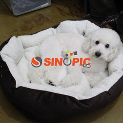 Luxury warm soft pet bed for dog or cat(China (Mainland))