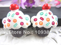 New arrival free shipping 20pcs/lot resin food for hair phone home decoration
