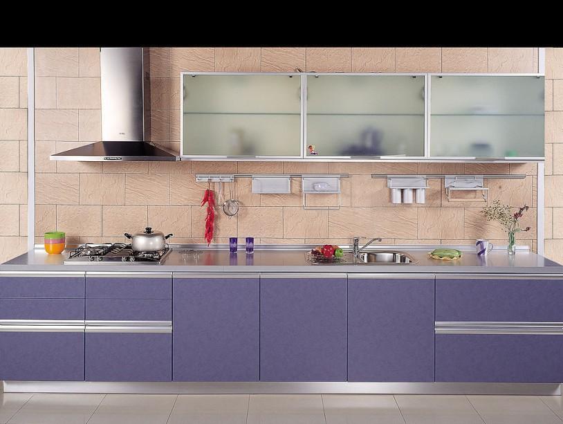 kitchen cabinet door integrated kitchen cabinet storage(China (Mainland))