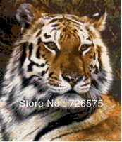 Free Shipping:  Shinging Brightly DIY Diamond Art of Tiger