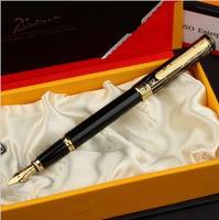Picasso fountain pen picas 902 - series fountain pen