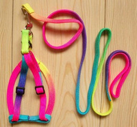 Free Shipping New Rainbow Small Dog Doggie Puppy Pet Harnesses with Leash Rope Random