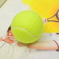 Tennis ball training tennis ball tennis ball exercise ball suspended tennis ball tennis ball tennis ball
