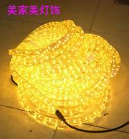 Led lights with lights neon lamp with lights background light belt decoration lamp belt big round 2 line