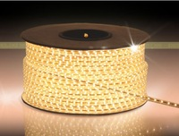 Delixi lights with 3528led smd led with ceiling neon conduit lamp soft light band super bright 1 meters