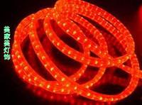 Led lights with lights neon lamp with lights background light belt decoration lamp belt flat three wire h blurter