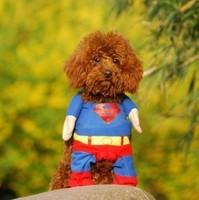 Shapeshift 2012 stunning dog super man pet dog clothes pet vip teddy