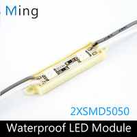 LED module for channel letter or advertising led sign 2 LED SMD 5050 waterproof 1000pcs/lot free shipping