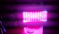 2013 hot sale  3w led  6 band 300w 100x3w Led Grow Light free shipping  for hydroponic tent indoor herbs veg and flowering