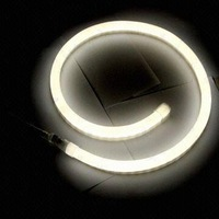 Neon flex Mini size 10*22mm,white color 10Meters per lot,