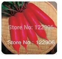 SE1009 Free shipping!   250 Seeds Heirloom Healthy Organic Vegetable Radish Turnip Seeds