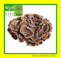 100% natural  Coriolus Versicolor Polysaccharides (PSK)   40%