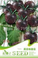 1 Packs 20 Seeds, Black Pearl Tomato Seed