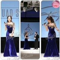 Arabia Singer Myriam Fares One shoulder Long Sleeve With Beaded Mermaid Floor length Velvet Real Picture Celebrity Dresses