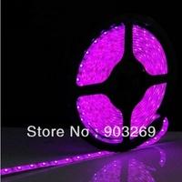 Free Shipping SMD 5050 Led Strip Light  Purple  Non-waterproof 60 leds /m 5m/roll  DC12V,Flexible Led Tape, IP 65