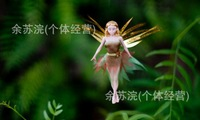 Meadow electric Fly fairy , lovely dolls flitter fairies, flying fairies, children birthday gift christmas gifts 2pcs/lot
